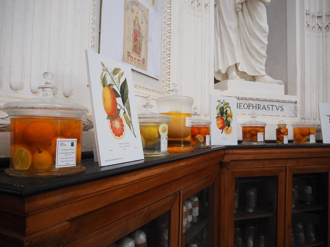 La Sicilia racconta la sua storia attraverso gli agrumi