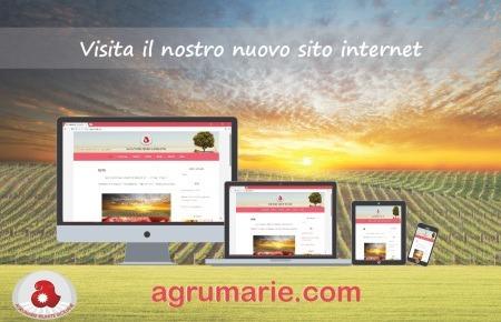 Nuovo sito web – Nuova veste grafica, dinamicità e semplicità di navigazione
